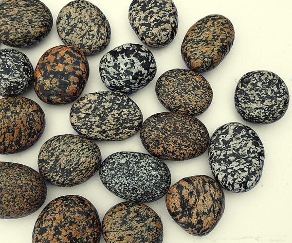 San Diego Leopard Pebbles