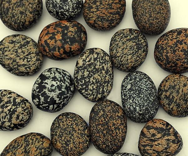 Leopard Pebbles
